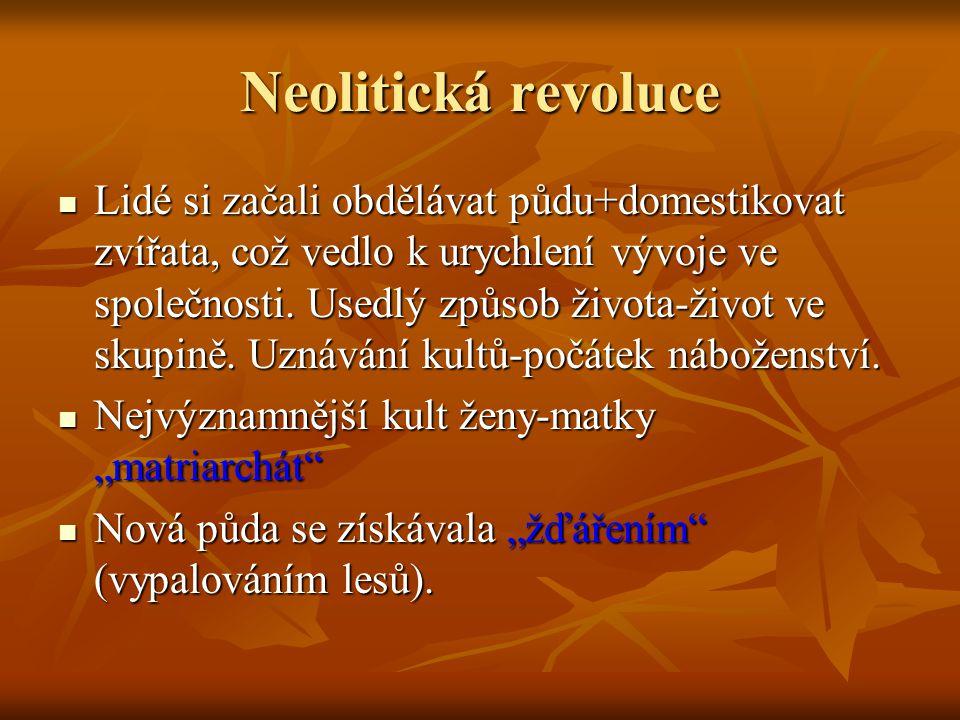 Neolitická revoluce