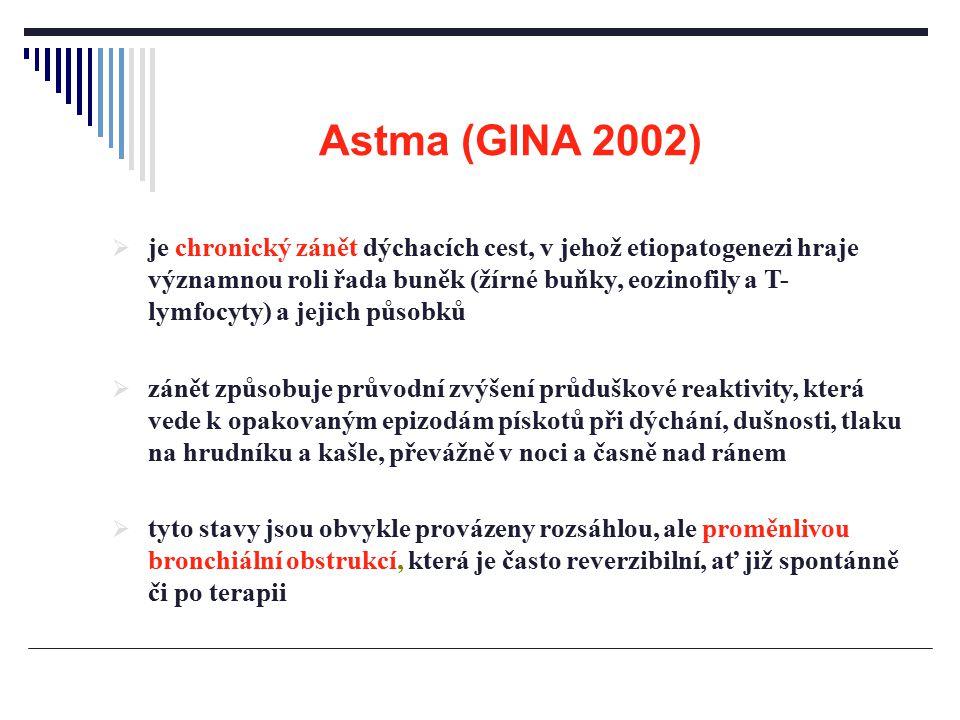Astma (GINA 2002)