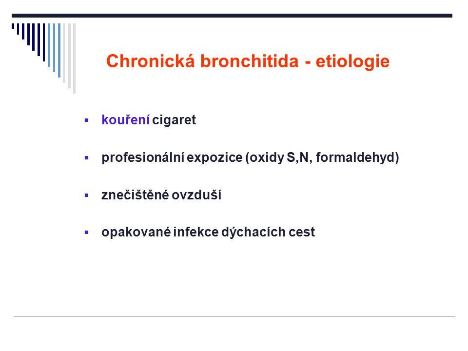 Chronická bronchitida - etiologie