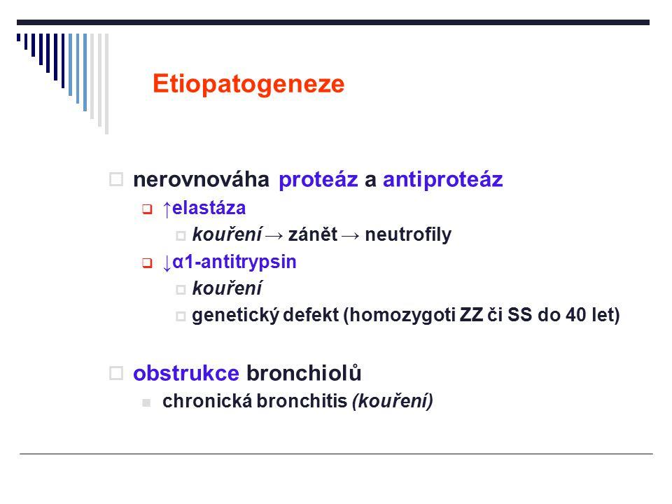 Etiopatogeneze nerovnováha proteáz a antiproteáz obstrukce bronchiolů