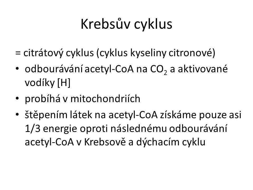 Krebsův cyklus = citrátový cyklus (cyklus kyseliny citronové)