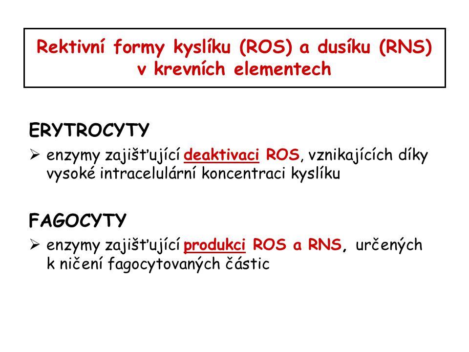 Rektivní formy kyslíku (ROS) a dusíku (RNS) v krevních elementech