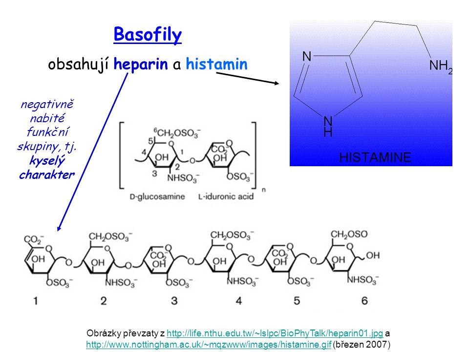 Basofily obsahují heparin a histamin