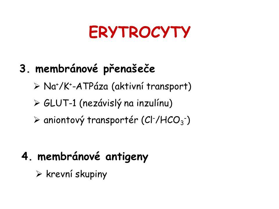 ERYTROCYTY membránové přenašeče membránové antigeny