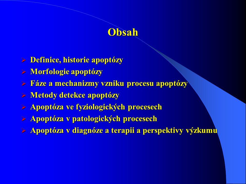 Obsah Definice, historie apoptózy Morfologie apoptózy