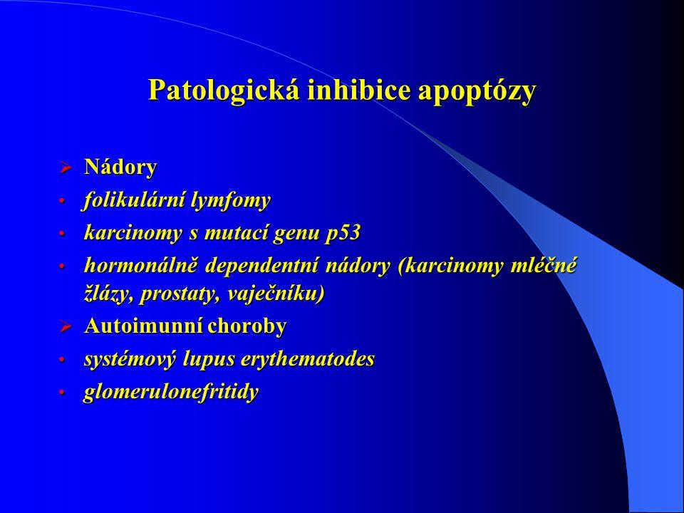 Patologická inhibice apoptózy