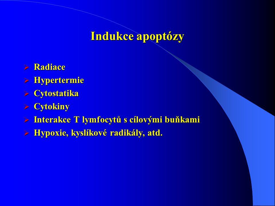 Indukce apoptózy Radiace Hypertermie Cytostatika Cytokiny