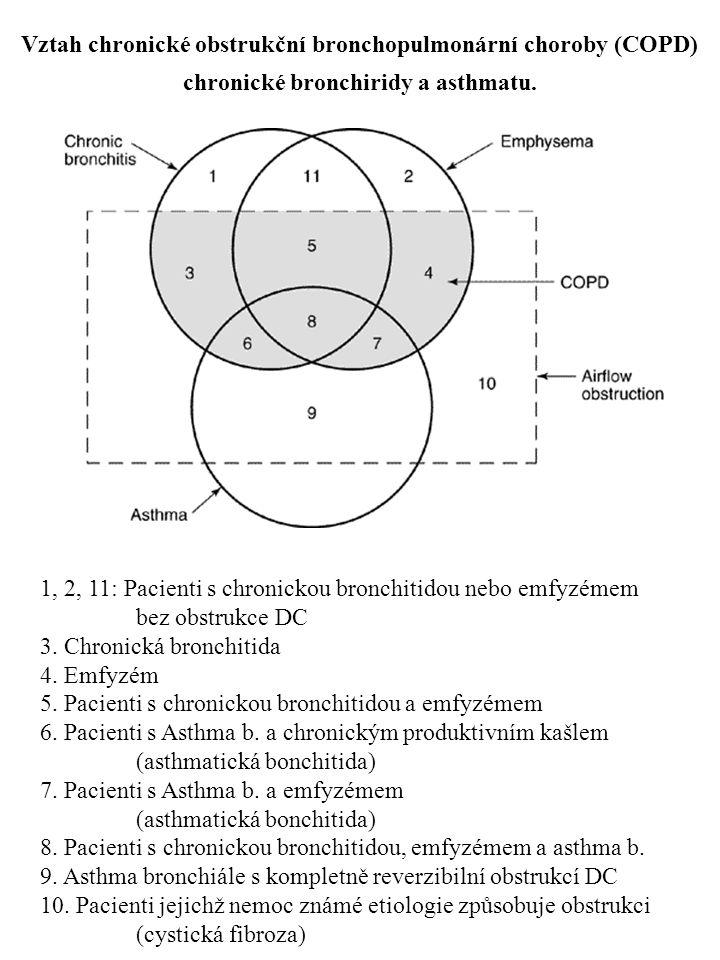 Vztah chronické obstrukční bronchopulmonární choroby (COPD)