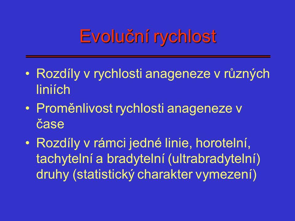 Evoluční rychlost Rozdíly v rychlosti anageneze v různých liniích