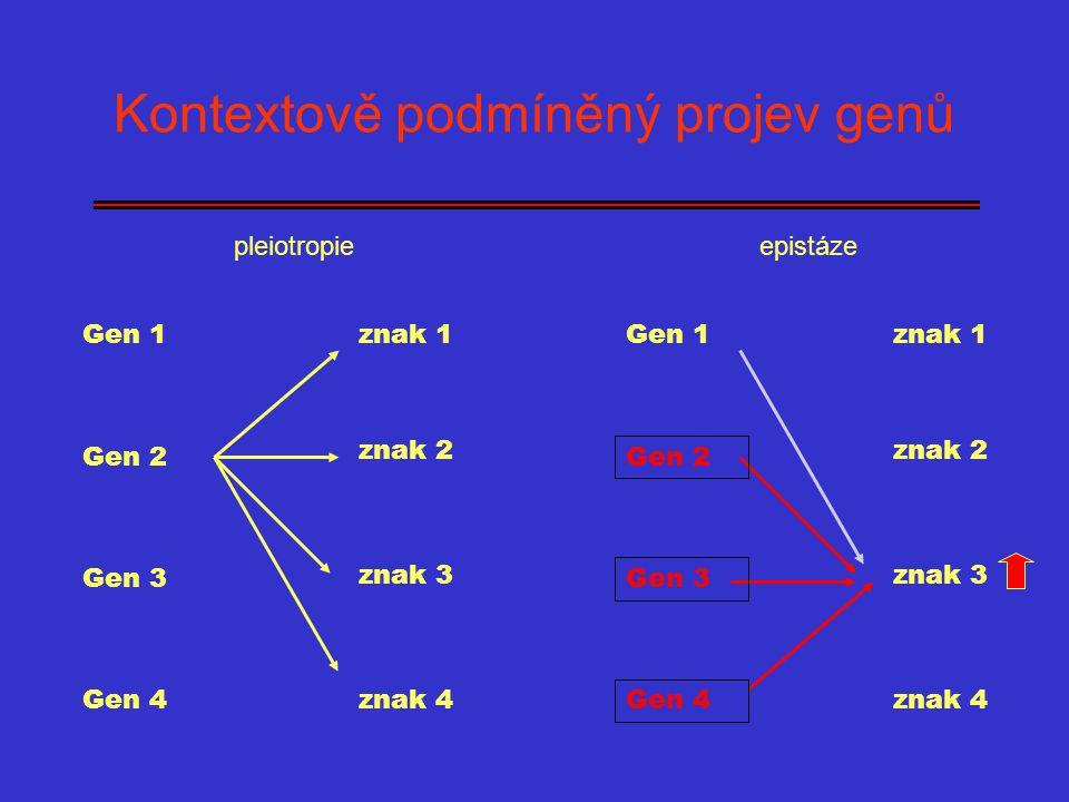 Kontextově podmíněný projev genů