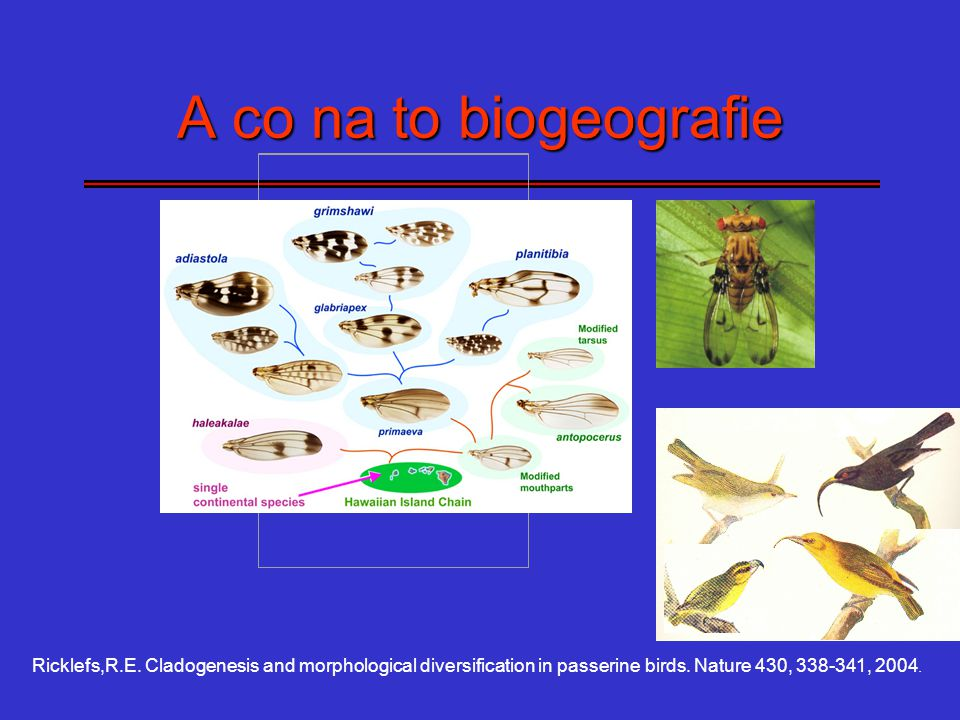A co na to biogeografie