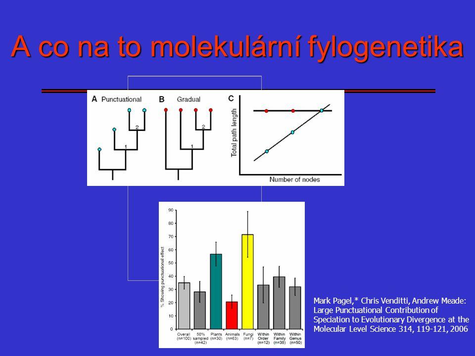 A co na to molekulární fylogenetika