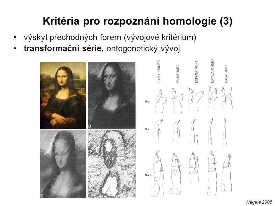 Kritéria pro rozpoznání homologie (3)