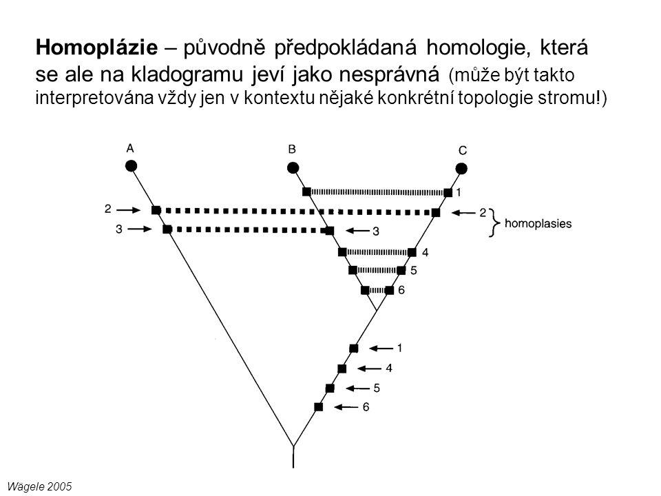 Homoplázie – původně předpokládaná homologie, která se ale na kladogramu jeví jako nesprávná (může být takto interpretována vždy jen v kontextu nějaké konkrétní topologie stromu!)
