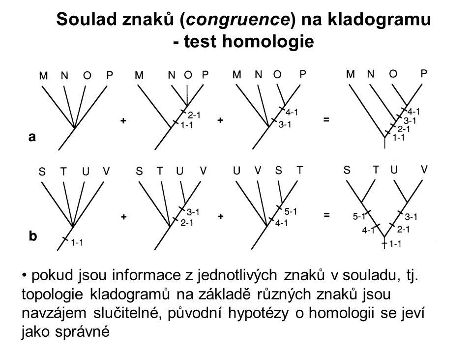 Soulad znaků (congruence) na kladogramu - test homologie