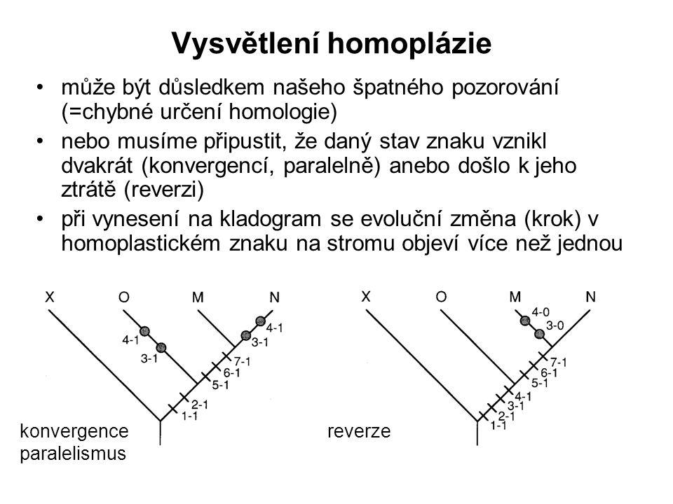 Vysvětlení homoplázie