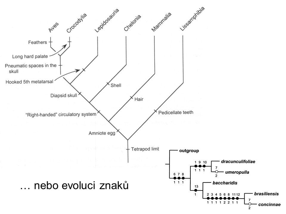 … nebo evoluci znaků