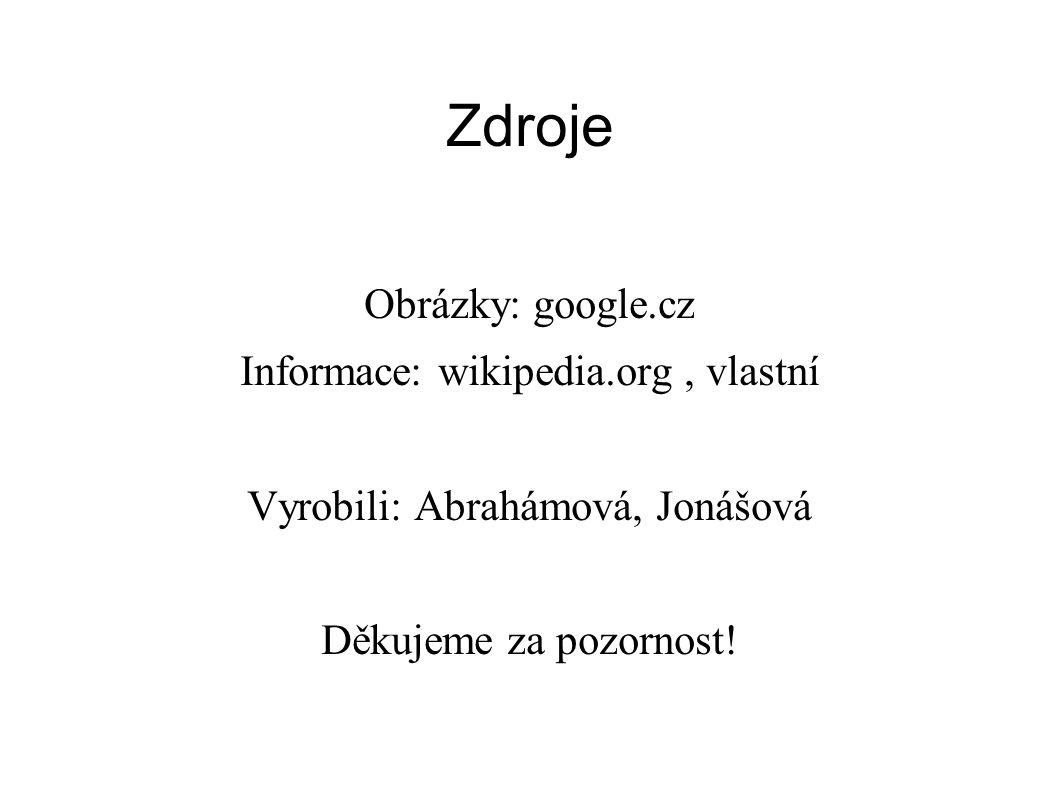 Zdroje Obrázky: google.cz Informace: wikipedia.org , vlastní