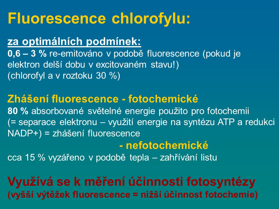 Fluorescence chlorofylu:
