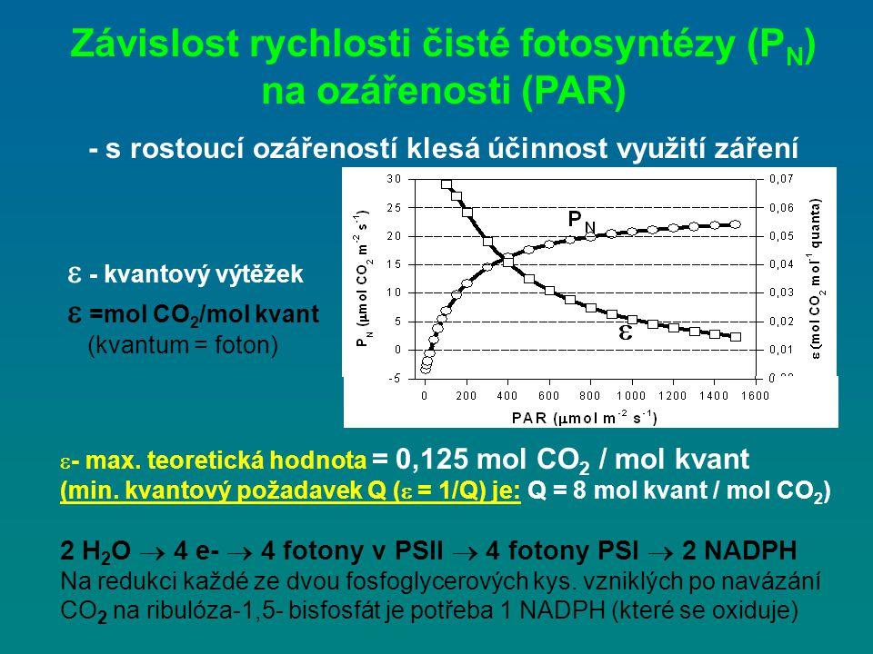Závislost rychlosti čisté fotosyntézy (PN) na ozářenosti (PAR)
