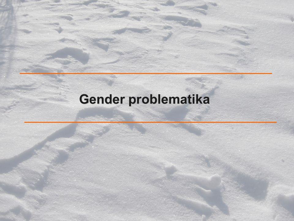 Gender problematika Nejprve zmíním motivaci tohoto výzkumu,