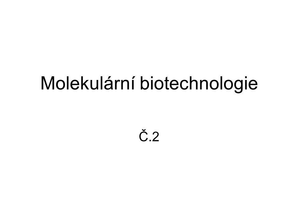 Molekulární biotechnologie