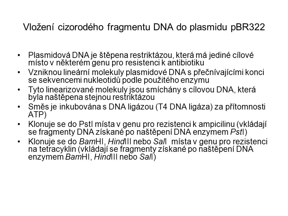 Vložení cizorodého fragmentu DNA do plasmidu pBR322