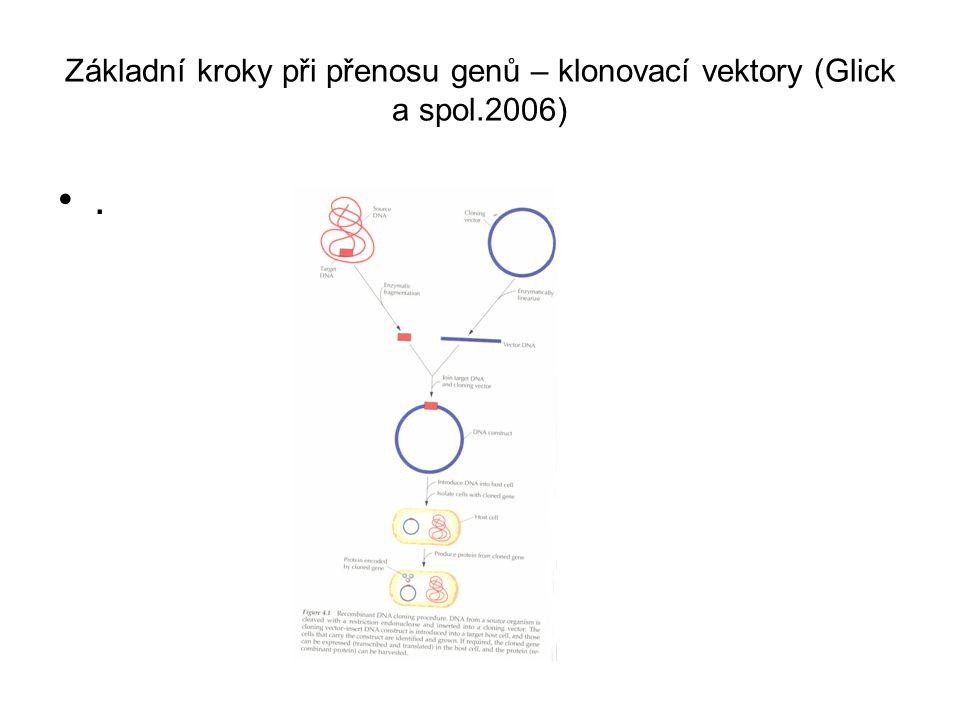 Základní kroky při přenosu genů – klonovací vektory (Glick a spol