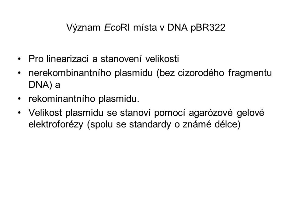Význam EcoRI místa v DNA pBR322
