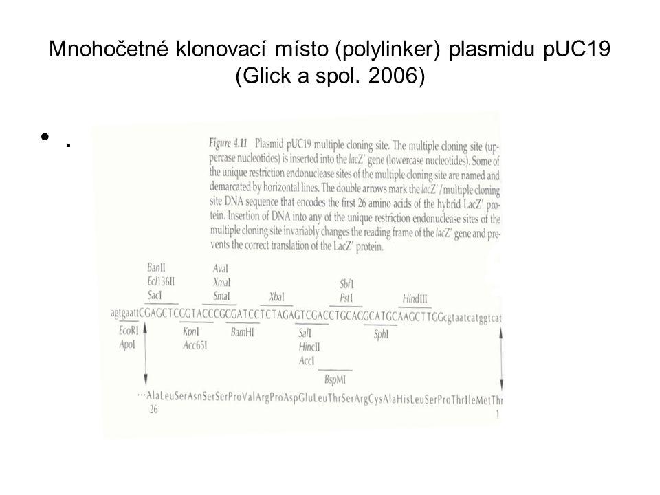 Mnohočetné klonovací místo (polylinker) plasmidu pUC19 (Glick a spol
