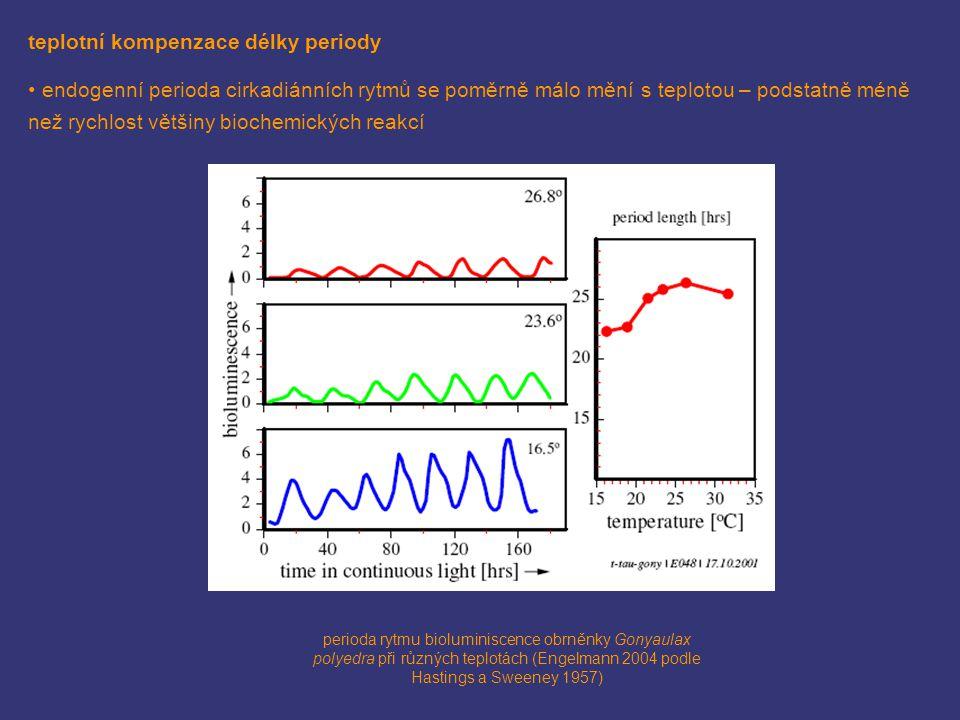 teplotní kompenzace délky periody