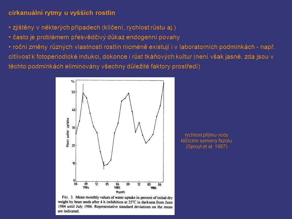 rychlost příjmu vody klíčícími semeny fazolu (Spruyt et al. 1987)