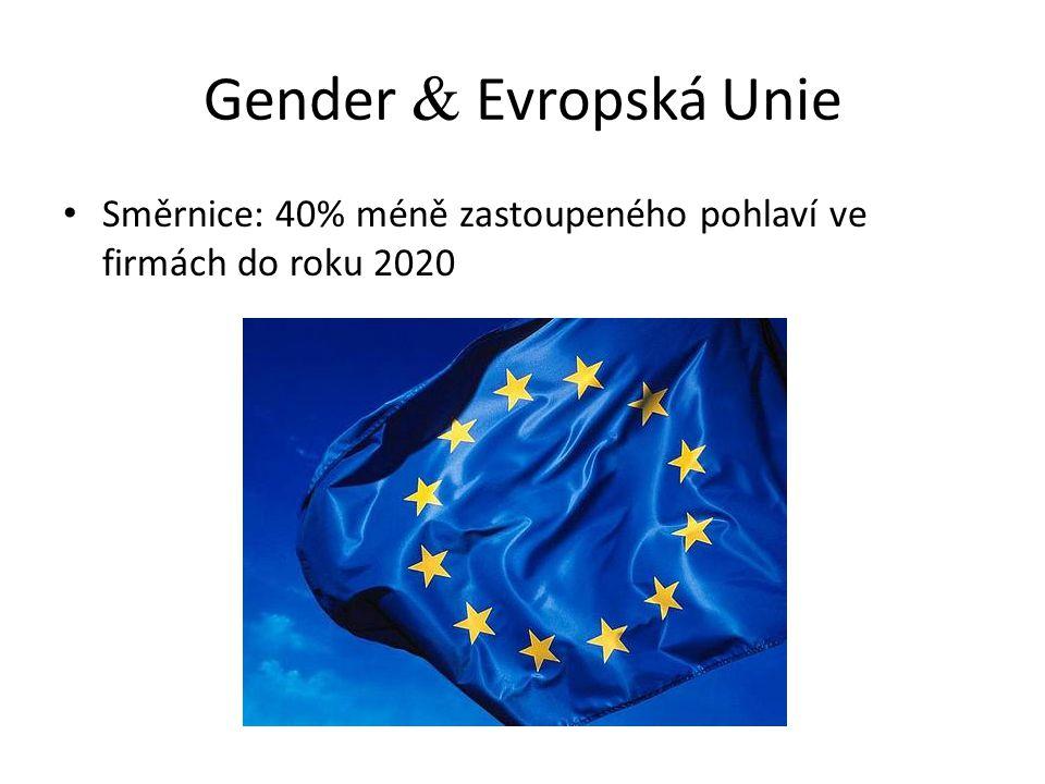 Gender  Evropská Unie Směrnice: 40% méně zastoupeného pohlaví ve firmách do roku 2020