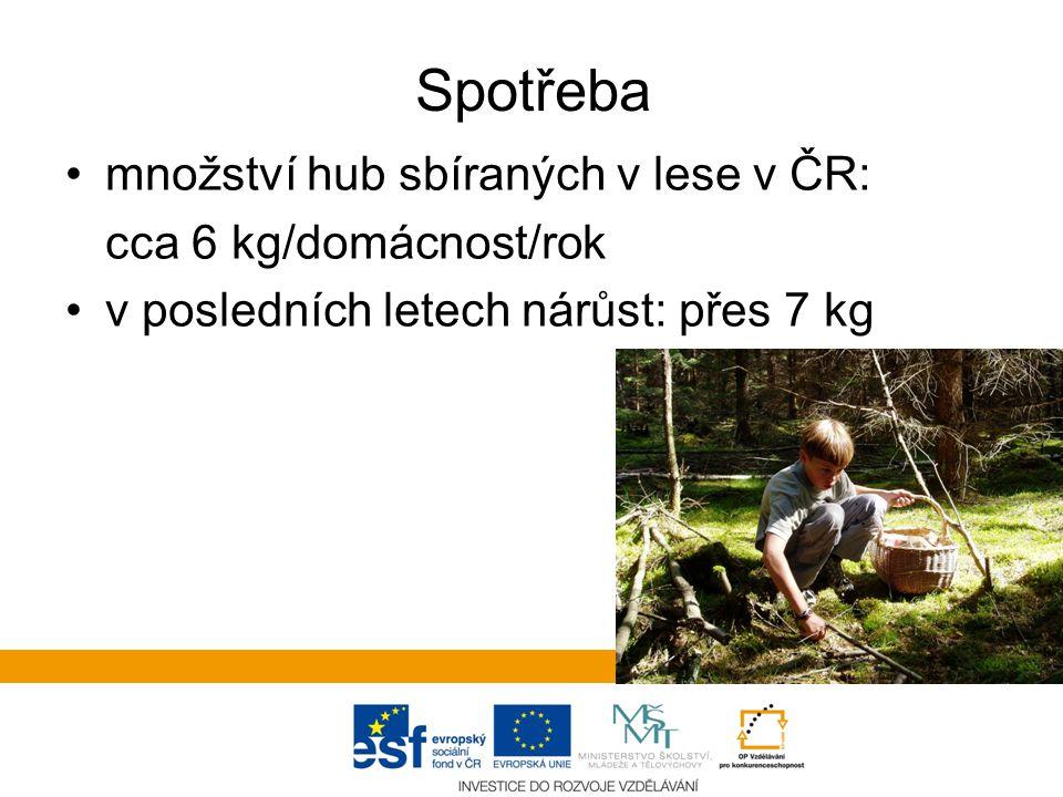 Spotřeba množství hub sbíraných v lese v ČR: cca 6 kg/domácnost/rok