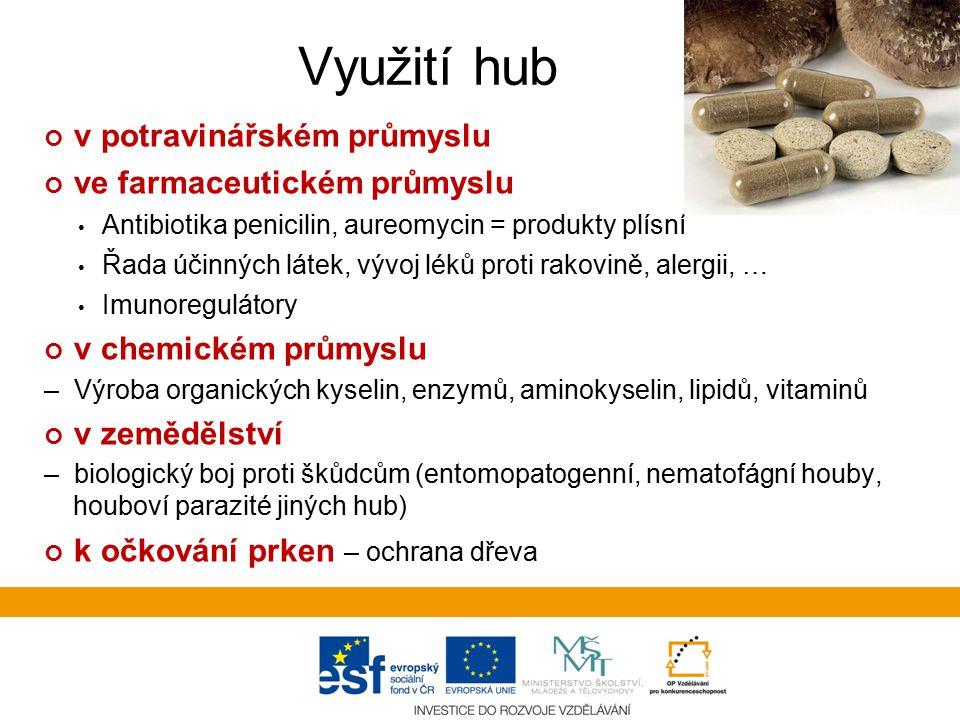 Využití hub v potravinářském průmyslu ve farmaceutickém průmyslu