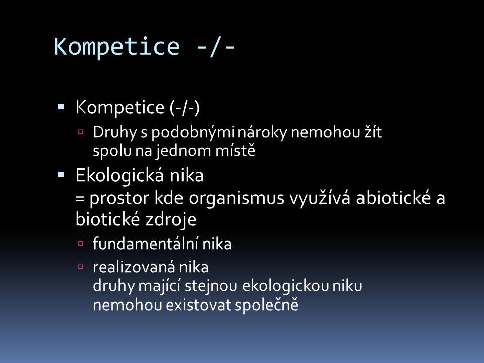 Kompetice -/- Kompetice (-/-)