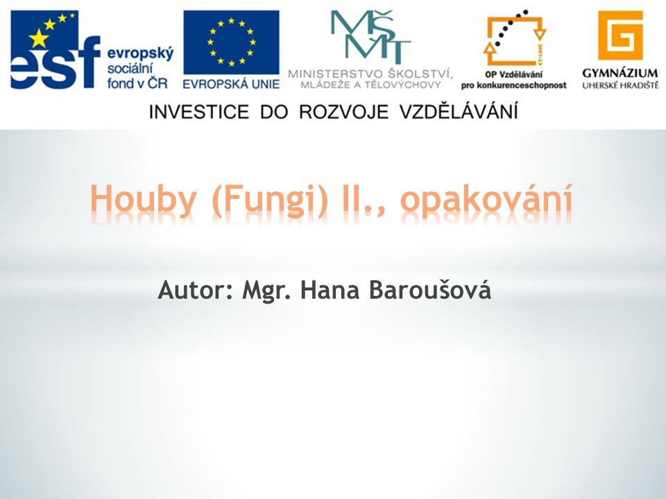 Houby (Fungi) II., opakování
