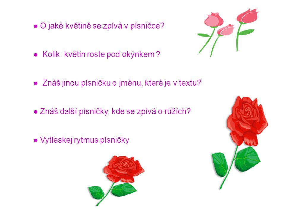 ● O jaké květině se zpívá v písničce