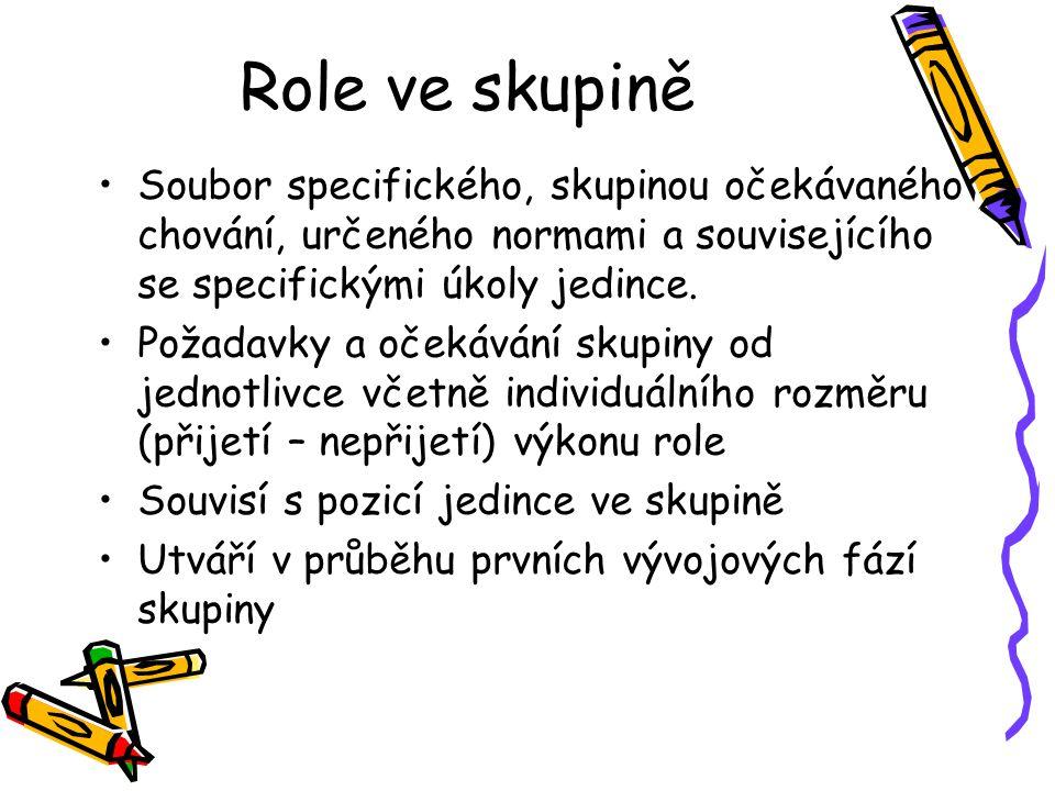 Role ve skupině Soubor specifického, skupinou očekávaného chování, určeného normami a souvisejícího se specifickými úkoly jedince.