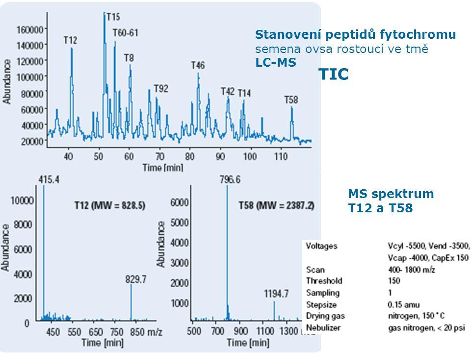 TIC Stanovení peptidů fytochromu semena ovsa rostoucí ve tmě LC-MS