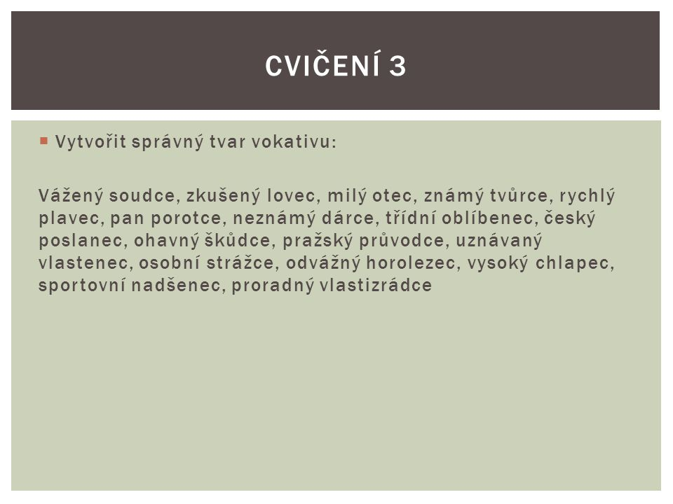 Cvičení 3 Vytvořit správný tvar vokativu: