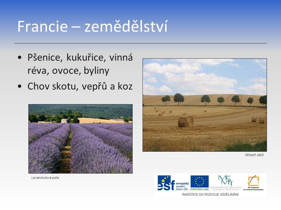 Francie – zemědělství Pšenice, kukuřice, vinná réva, ovoce, byliny