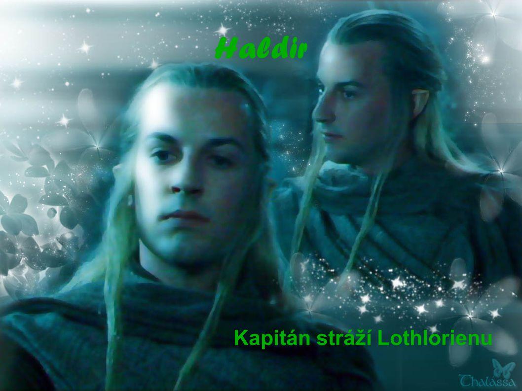 Kapitán stráží Lothlorienu
