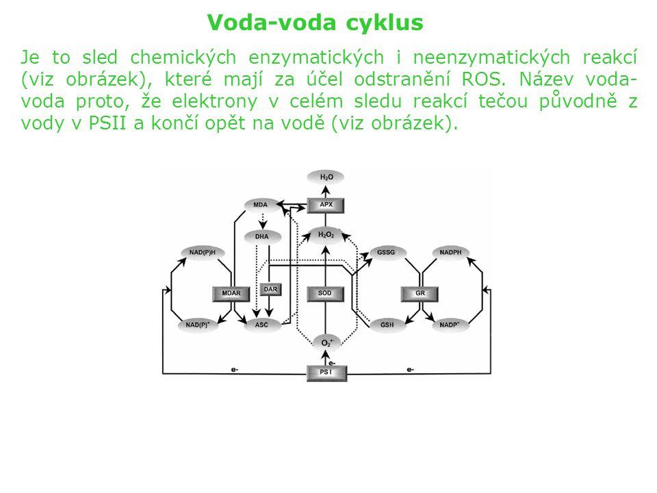 Voda-voda cyklus
