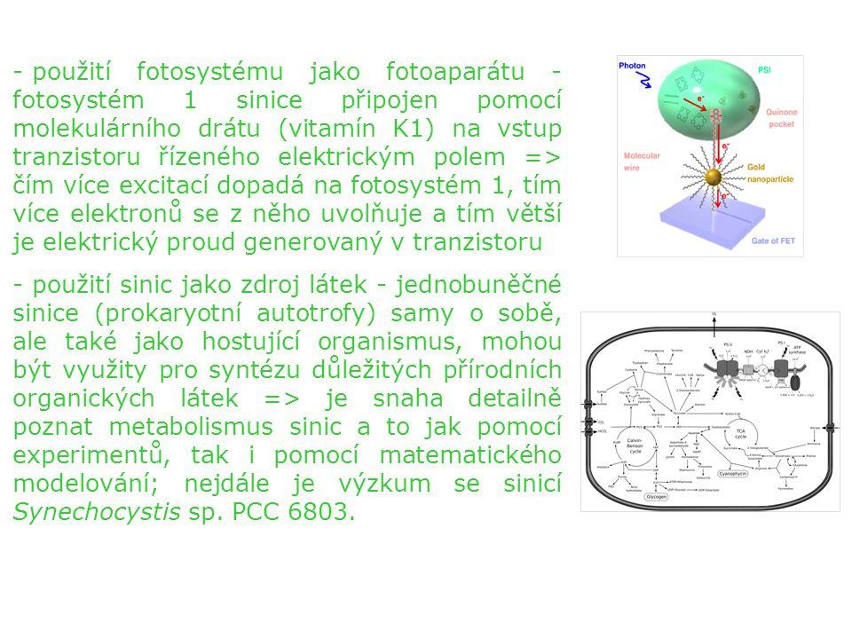 použití fotosystému jako fotoaparátu - fotosystém 1 sinice připojen pomocí molekulárního drátu (vitamín K1) na vstup tranzistoru řízeného elektrickým polem => čím více excitací dopadá na fotosystém 1, tím více elektronů se z něho uvolňuje a tím větší je elektrický proud generovaný v tranzistoru
