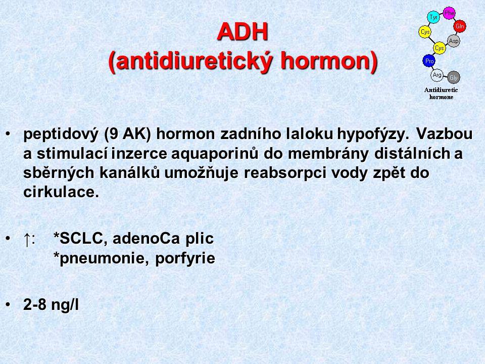 ADH (antidiuretický hormon)