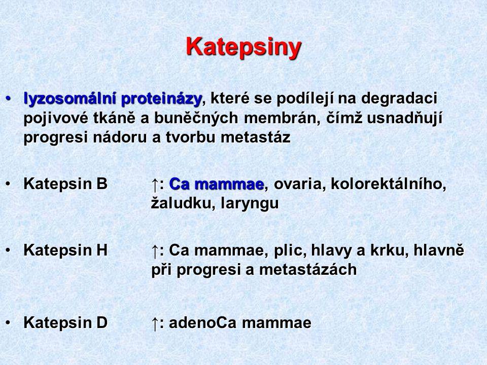 Katepsiny lyzosomální proteinázy, které se podílejí na degradaci pojivové tkáně a buněčných membrán, čímž usnadňují progresi nádoru a tvorbu metastáz.