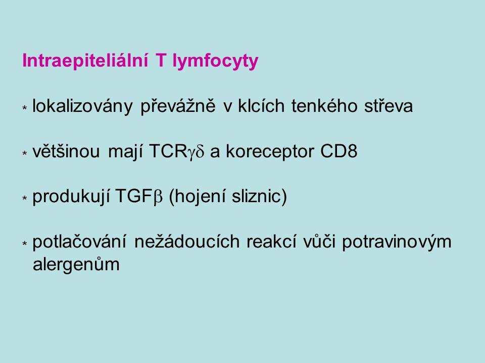 Intraepiteliální T lymfocyty