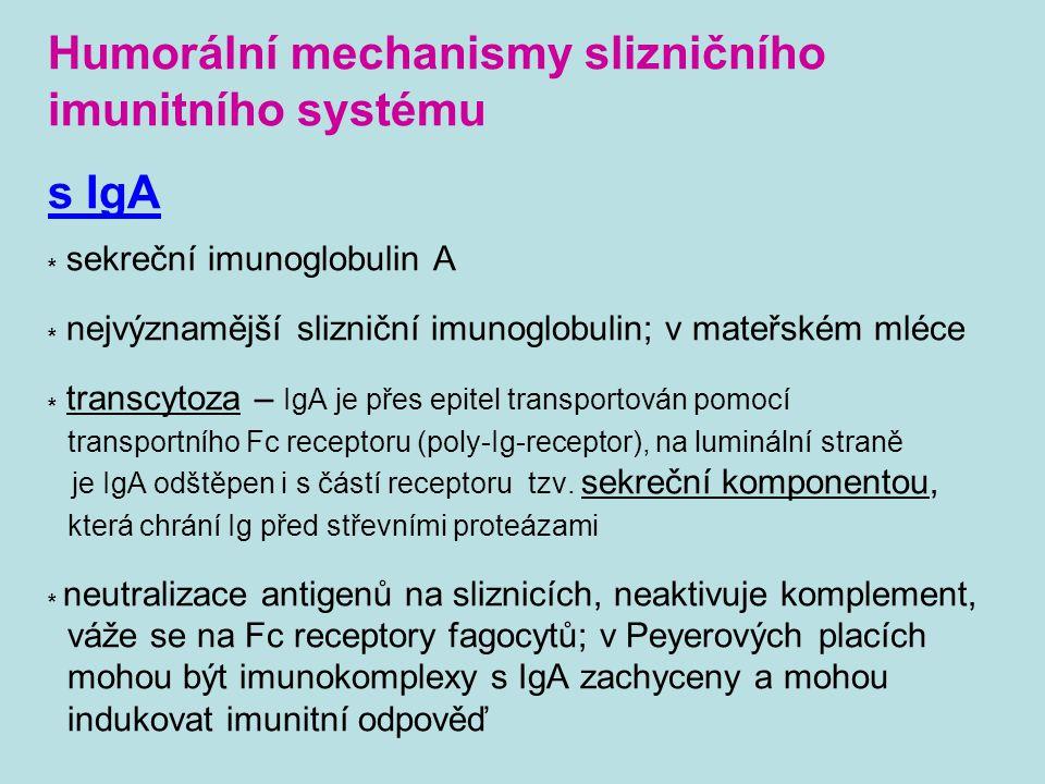Humorální mechanismy slizničního imunitního systému s IgA