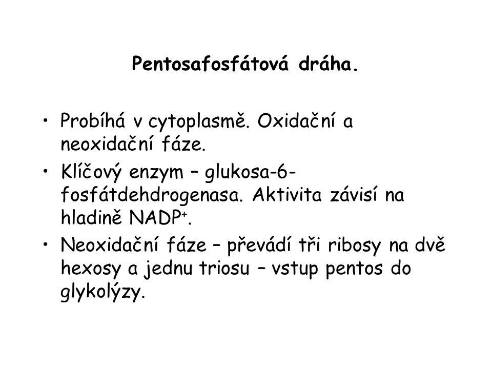 Pentosafosfátová dráha.
